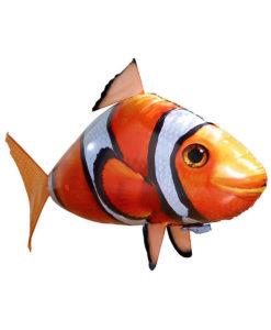 Pesce Pagliaccio Volante