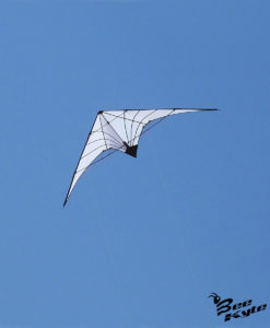 AQUILONE WHITE SPIDER DELTA